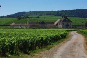 Clos du Moulin aux Moines vinos Caskadia