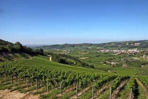 Dal Forno Romano vinos Caskadia