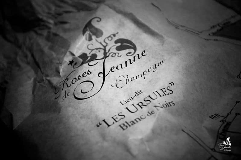 Champagne Roses de Jeanne Caskadia